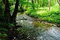 Rzeka Kłodawa, Jar Kłodawy, okolice wsi Kłodawa, pow. gdański 2 - panoramio.jpg