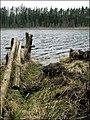 Sūdezers (Sūnu ezers) - panoramio.jpg