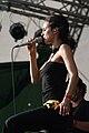 SAEDI Donauinselfest 2011 13.jpg