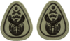 SANDF Rank Insignia WO1 Level 2 embossed badge.png