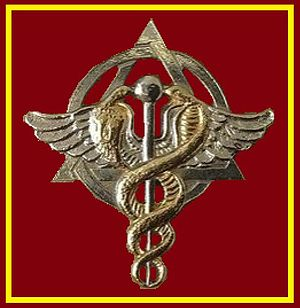 South African Military Health Service - Image: SANDF SAMHS Dentist chest insignia