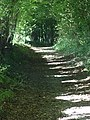 Sadler's Road - geograph.org.uk - 243481.jpg