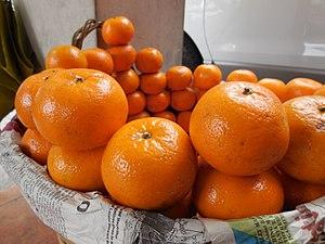 Sagada - Oranges cultivated in Sagada, being sold at a market in La Trinidad, Benguet.