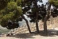 Sagunt, castell PM 51646.jpg