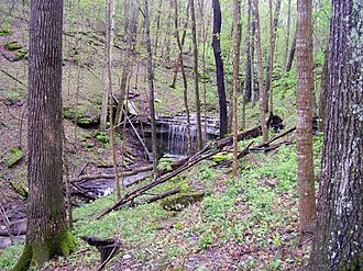 Crutcher and Sally Brown Nature Preserves - Waterfall in Sally Brown section