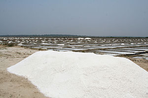 The salt works just north of Pondicherry, India.