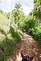 Samaná Province, Dominican Republic - panoramio (88).jpg