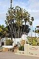 San Diego - Old Town, CA, USA - panoramio (9).jpg