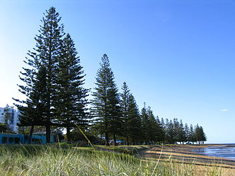 Scarborough, Queensland - Image: Scarborough Beach Queensland