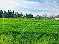 Scenic Beauty Of Khyber Pakhtunkhwa - 02 by Azhar.jpg