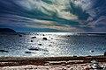 Seascape Newfoundland (40650783964).jpg