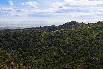 Sección oeste de Sierra Calderona.jpg
