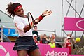 Serena Williams (6959715310).jpg