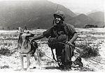 Sgt. Spano and Lobo, Da Nang, Vietnam, August 1968 (5860411864).jpg