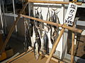 Shio-Katsuo Nishiizu Shizuoka Japan.jpg