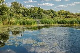 Shlihtinskoe Lake - 001.jpg