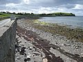 Shore Road, Portaferry - geograph.org.uk - 456227.jpg