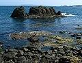 Shoreline, Portbraddan - geograph.org.uk - 819973.jpg