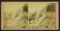 Silver cascade, by Upton, B. F. (Benjamin Franklin), 1818 or 1824-after 1901 2.png