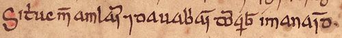 Image of an excerpt from the Annals of Ulster which records the deaths of Sitric and the two grandsons of Brian Bóruma, in 1073.