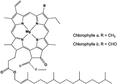 Skeletal formula of chlorophyll a & b - fr.png