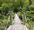 Slovenia - wooden bridge.jpg