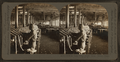 Slubbing Yarn, Dallas Cotton Mills, Dallas, Texas, U.S.A, by Singley, B. L. (Benjamin Lloyd).png