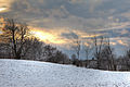 Snowfall sunset at Belfountain in 2008.jpg