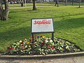 Solidarność memorial tree, Park Square, Leeds (22nd February 2018) 001.jpg