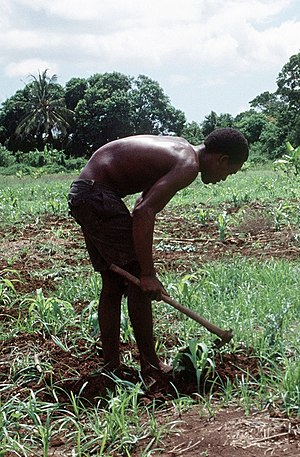 Bantus (Somalia) - A Bantu man working in the fields.