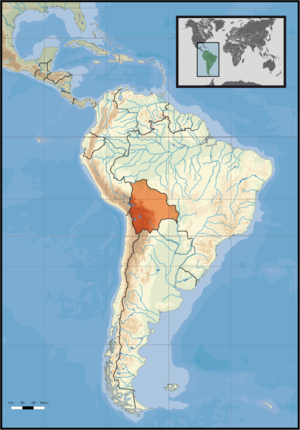 Location of Bolivia in South America on the 1s...