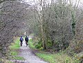 South Staffordshire Railway Walk at Wombourne - geograph.org.uk - 628769.jpg