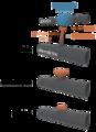 Spline types 3D.png