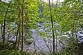 Stamp River Provincial Park, Vancouver Island (36846680235).jpg