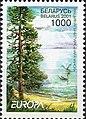Stamp of Belarus - 2001 - Colnect 85841 - Nature reserve - Narochanskyi.jpeg