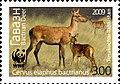 Stamps of Tajikistan, 015-09.jpg