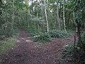 Stapleford Moor - geograph.org.uk - 245755.jpg