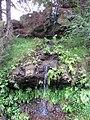 Starr-120312-3788-Impatiens walleriana-habit and waterfall-Kula Botanical Garden-Maui (25111429976).jpg