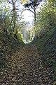 Steckborn - panoramio (43).jpg