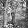 """Stenen grenspaal met opschrift """"Van der Lijn in Sijpestein"""" - Lisse - 20140933 - RCE.jpg"""