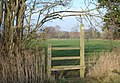 Stile near Hanley Swan - geograph.org.uk - 637335.jpg