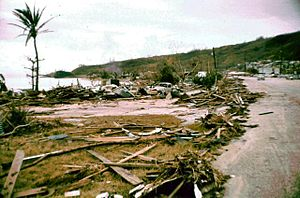 Typhoon Karen - A week after the storm, coastal areas devastated by the typhoon were seemingly untouched.