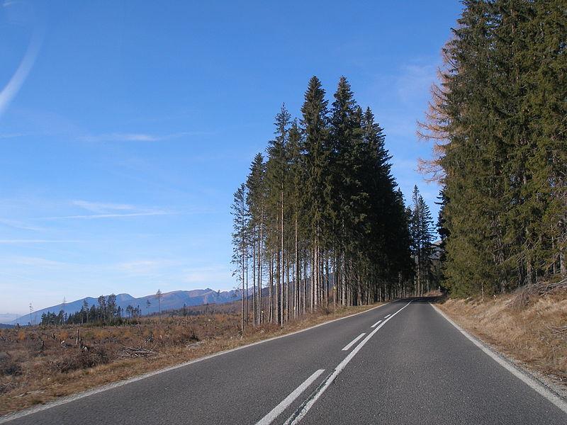 File:Strba11Slovakia6.jpg