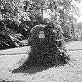 Stronk van de z.g. Totleben-eik in het park van het paleis, Bestanddeelnr 255-7913.jpg