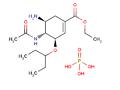 Strukt vzorec oseltamivir-fosfat.PNG