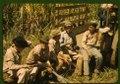 Sugar cane workers resting, Rio Piedras, Puerto Rico LCCN2017877774.tif