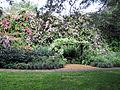 Sunken Gardens Butterfly Garden (1).jpg