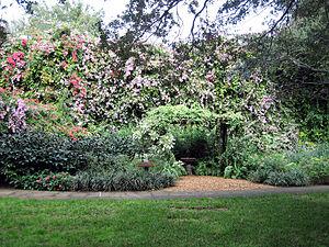 English: Butterfly Garden