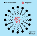 Surfactant around a polymer chain in a latex paint.png
