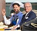 Sveriges Nationaldag 2013-2.jpg